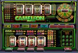 Cameleon slot
